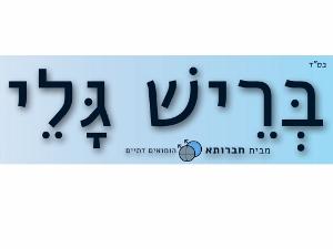 beresh-tashaz-logo-300x225